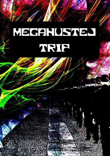 Martin Koláček: Megahustej trip